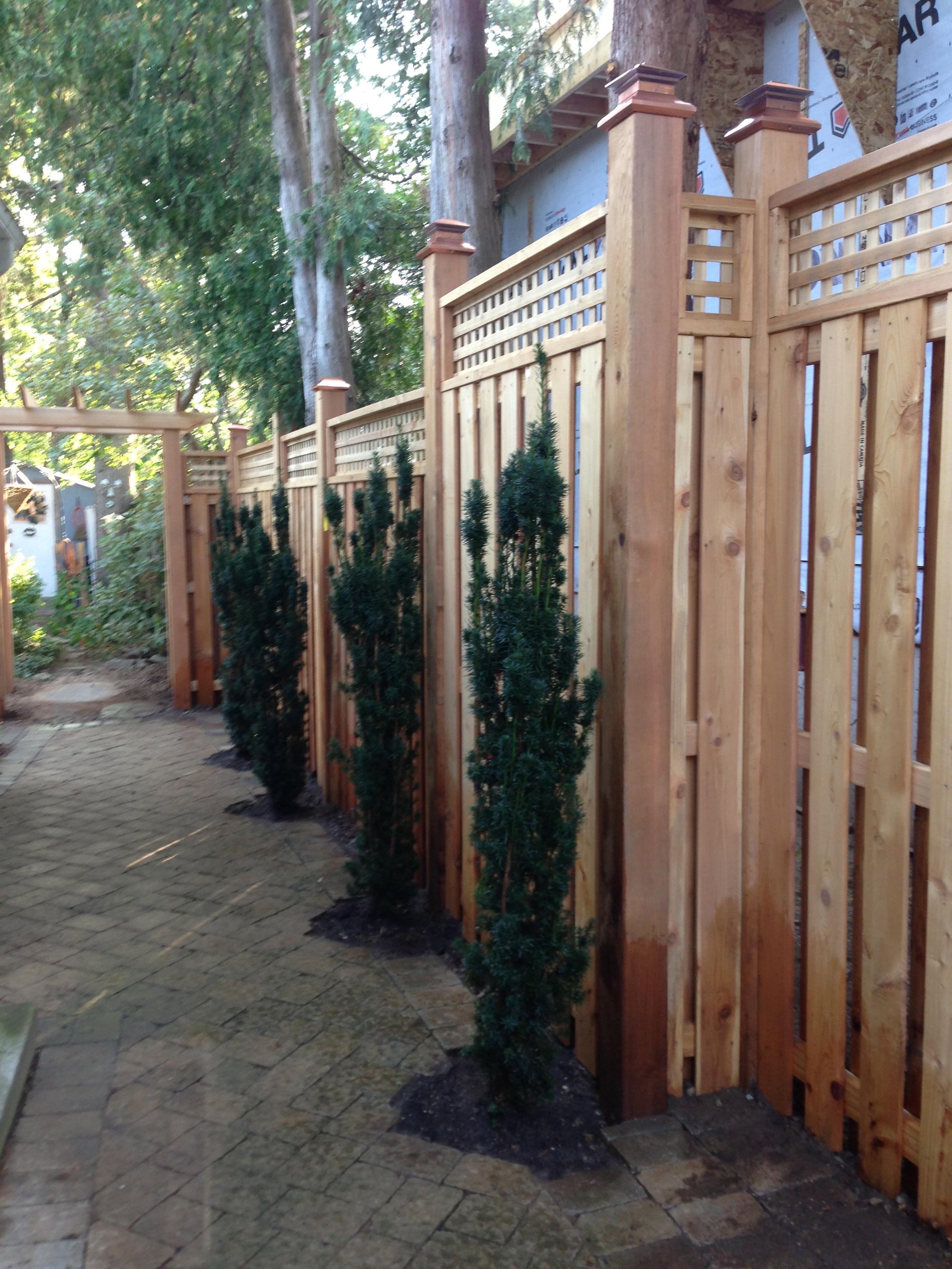 Fence 8.jpg