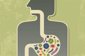 Approaches to studying and manipulating the enteric microbiome to improve autism symptoms
