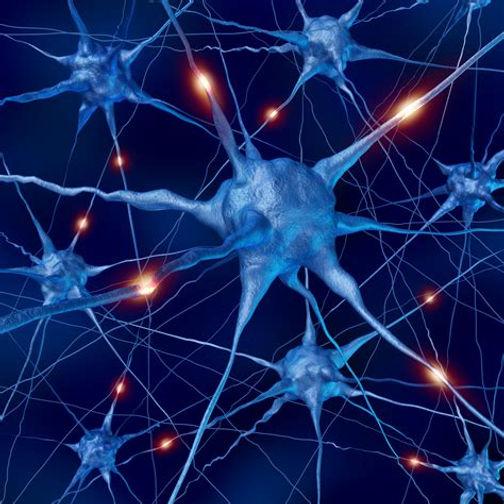 Autism Shares Brain Signature With >> Autism Shares Brain Signature With Schizophrenia Bipolar Disorder