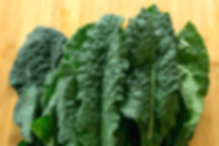 nutrition-2-image-1030x687.png