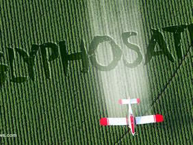 Is the Weed Killer Glyphosate Harming Your Health?