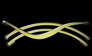 EDO logo.png