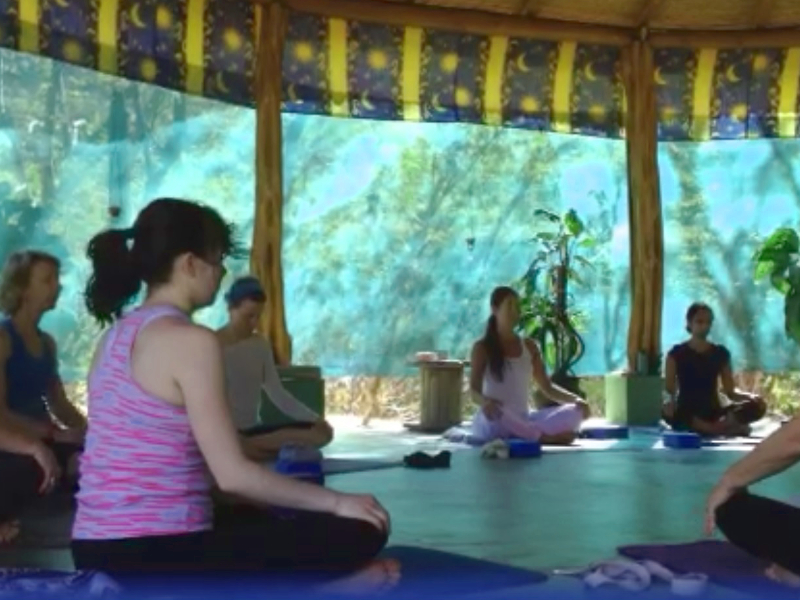 SatsangYoga-YogaClass-Pranayama-01-800x600.jpg