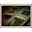 Thumbnail: Bygone Rowboats III