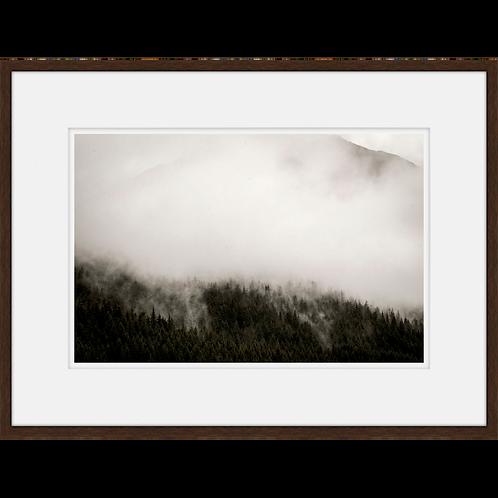 Mountain Fog I