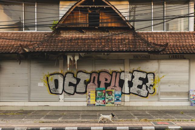 OCTOPUTE II