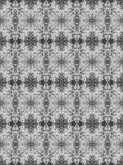 B1025278.jpg