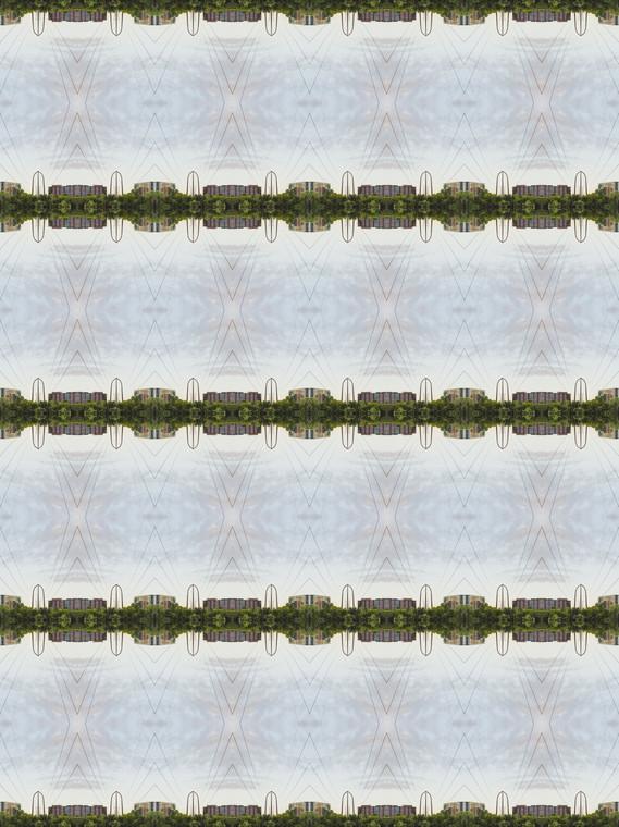 B1025137.jpg
