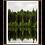 Thumbnail: Tree Reflection