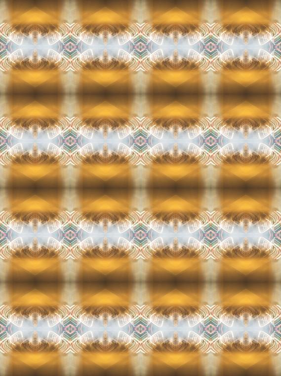 B1025162.jpg
