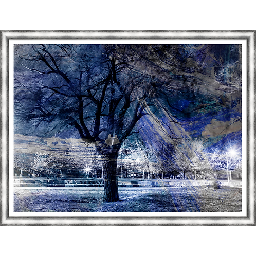 Park At Night In Blue