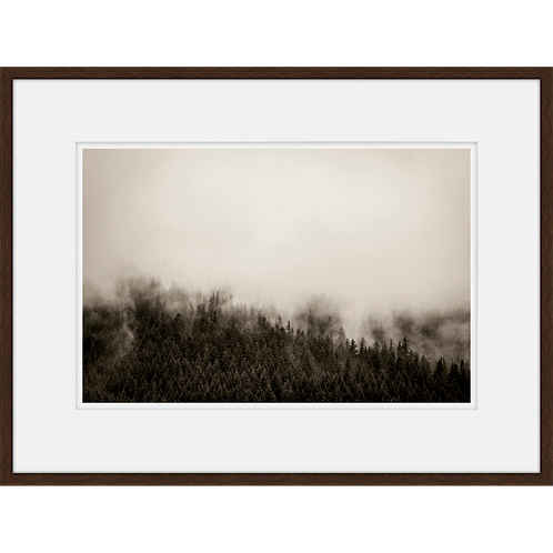 Mountain Fog II