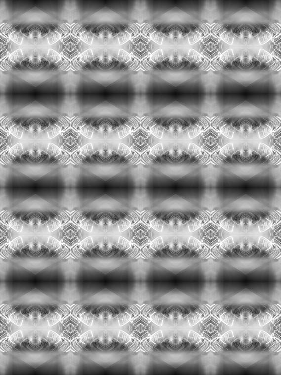 B1025162-BW.jpg