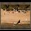 Thumbnail: Surfboards