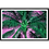 Thumbnail: Tropical Palm in Pink & Green