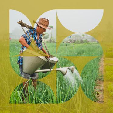 VEGETABLE VILLAGE FARMER I