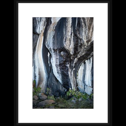 Zebra Rocks II