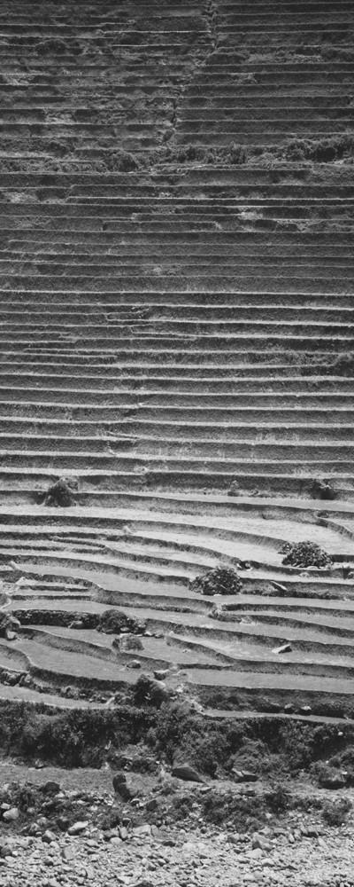 Vietnam-L1000727.jpg