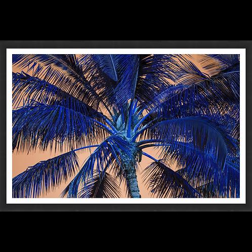 Tropical Palm in Orange & Blue