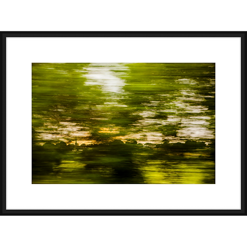 A Moving Landscape in Green