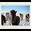 Thumbnail: Yakut I