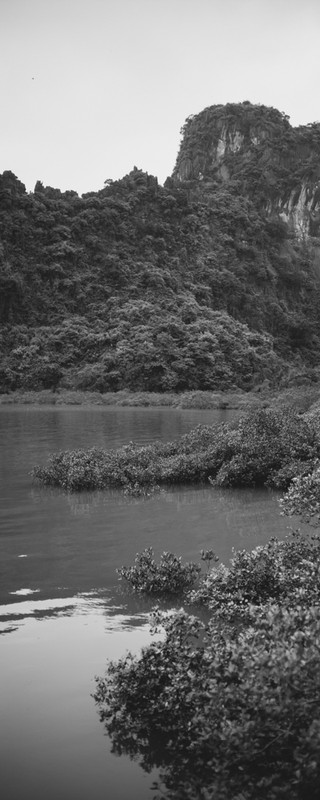 Vietnam-L1001304.jpg