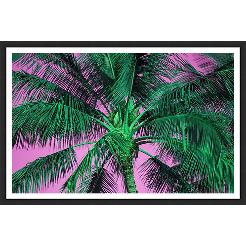 Tropical Palm in Pink & Green