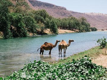 Wadi_Darbat_1.jpg