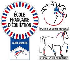 label EFE PCF CCF.jpg