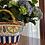 Thumbnail: Coffa siciliana en cerámica