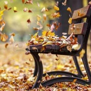 wedding fall bench
