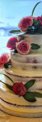 cz wed cake.png