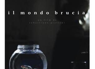 IL MONDO BRUCIA