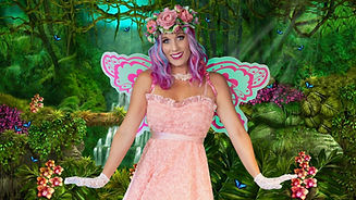 Solo Fairy 1 Flip.jpeg