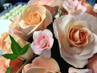 facebook_photo_10152650999847497.jpg