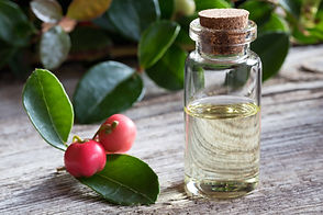Essential oils are the essence of each plants' herbal capacity.  They are medicine available through aromatherapy and enhance your healthcare treatment.