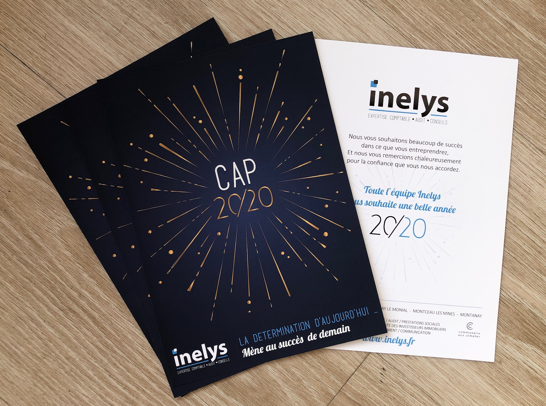 Vœux 2020 INELYS