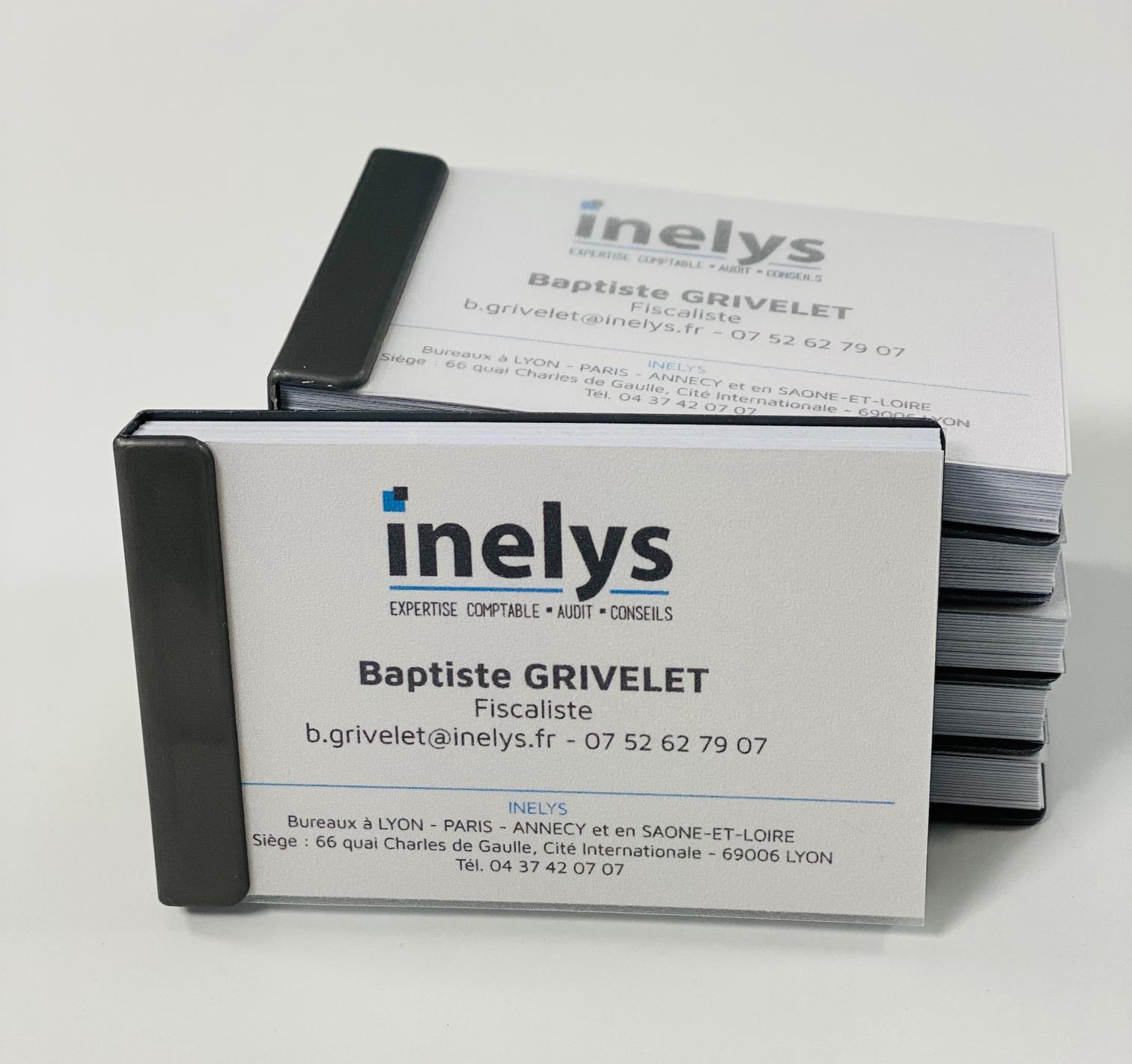 Carte de visite INELYS