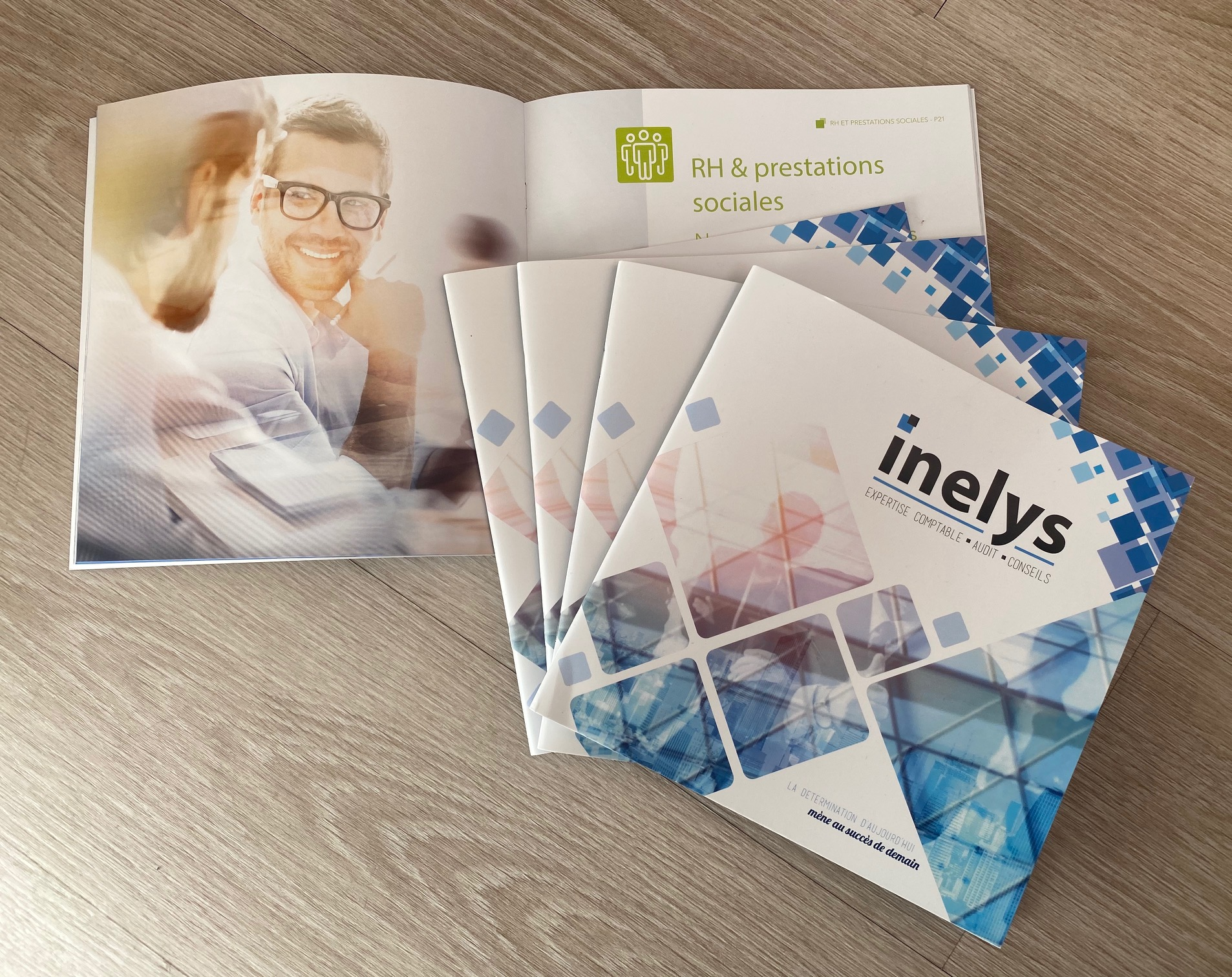 Catalogue Institutionnel INELYS