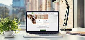 essens-consulting-mockup-site-web-virice