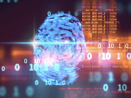 Ransomwares, phishing, attaques Ddos … Les menaces informatiques qui touchent les entreprises