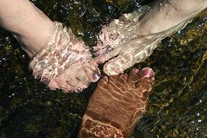 feet-908270_1920.jpg