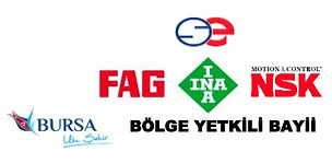 NSK INA FAG.JPG