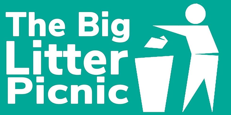 Big Litter Picnic