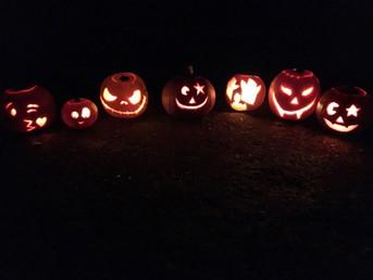 Network pumpkins.JPG