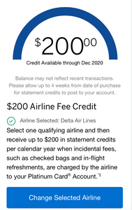 American Express Airline incidental