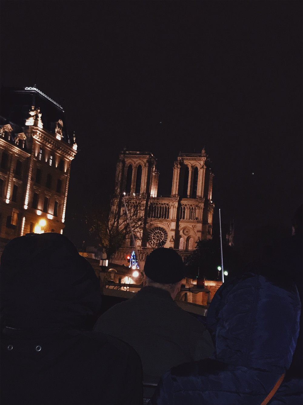 Notre Dame from the Seine River Cruise