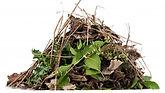 Garden-waste.jpg