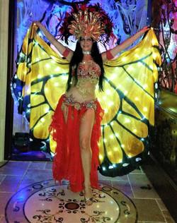 LED Butterfly entrance