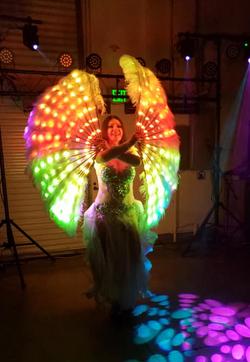 LED Feathers Fan